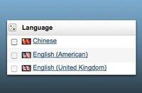 多语言支持